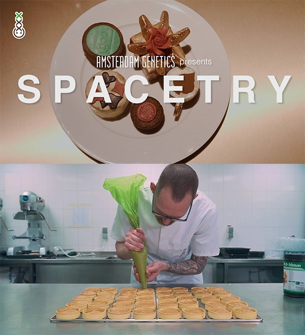 A pastry chef at Spacetry preparing a new batch of cannabis infused edibles Coffeeshop Guru