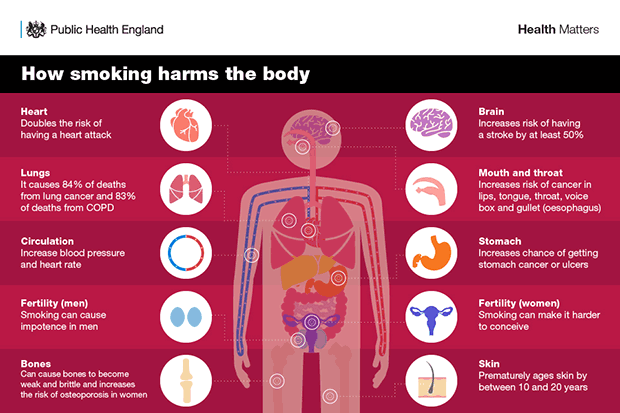 an infographic about the dangers of smoking cannabis mixed with tobacco at Coffeeshop Guru