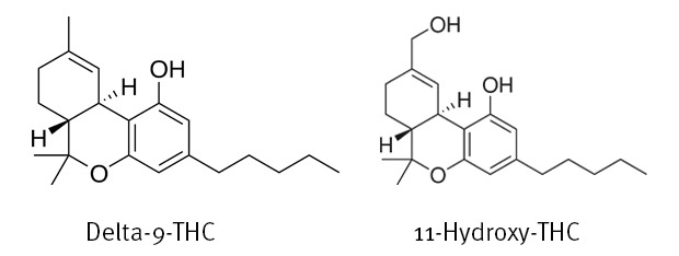 The chemical structures of both Delta-9-THC and 11-Hydroxy-THC at Coffeeshop Guru