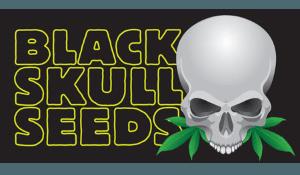 Logo of black skull seeds