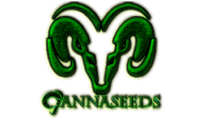Logo of Cannaseeds with a green goat